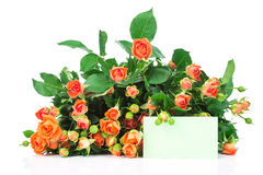 Ramalhete das rosas e de um cartão Imagem de Stock Royalty Free