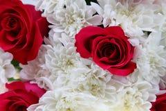 Ramalhete das rosas e dos crisântemos Fotografia de Stock Royalty Free