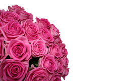 Ramalhete das rosas em um fundo branco Fotos de Stock Royalty Free