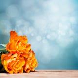 Ramalhete das rosas na frente de um fundo do bokeh Imagem de Stock Royalty Free