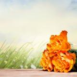 Ramalhete das rosas na frente de um prado do verão Fotos de Stock Royalty Free