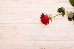 Ramalhete das rosas no fundo de madeira branco Imagem de Stock