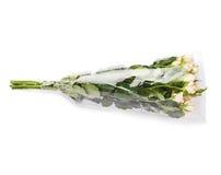 Ramalhete das rosas sobre o fundo isolado branco Imagens de Stock Royalty Free