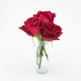 Ramalhete das rosas vermelhas no vaso de vidro Imagem de Stock Royalty Free