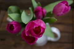 Ramalhete das tulipas imagens de stock royalty free