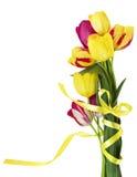Ramalhete das tulipas Fotos de Stock