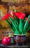 Ramalhete das tulipas e da maçã madura Imagem de Stock