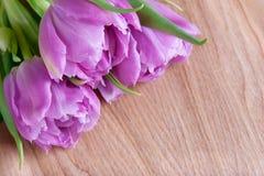 Ramalhete das tulipas em um fundo Fotos de Stock Royalty Free