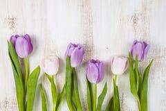 Ramalhete das tulipas em um fundo de madeira Fotos de Stock