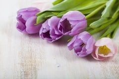 Ramalhete das tulipas em um fundo de madeira Foto de Stock