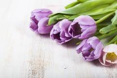 Ramalhete das tulipas em um fundo de madeira Imagens de Stock Royalty Free