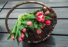 Ramalhete das tulipas na cesta no fundo de madeira Fotos de Stock