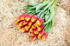 Ramalhete das tulipas na palha Fotos de Stock Royalty Free