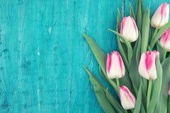 Ramalhete das tulipas no fundo de madeira rústico de turquesa com bobina Fotos de Stock