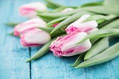 Ramalhete das tulipas no fundo de madeira rústico de turquesa Mola Fotos de Stock Royalty Free