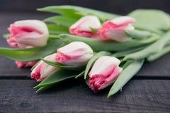 Ramalhete das tulipas no fundo de madeira rústico escuro Flowe da mola Foto de Stock