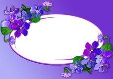 Ramalhete das violetas Fotos de Stock Royalty Free