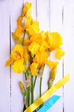 Ramalhete de íris amarelas de florescência Foto de Stock
