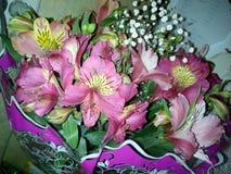 Ramalhete de alstromeries bonitos Fotos de Stock Royalty Free