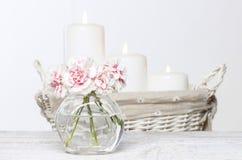 Ramalhete de cravos cor-de-rosa no vaso de vidro pequeno. Fotos de Stock Royalty Free
