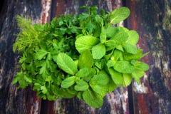 Ramalhete de ervas frescas Fotos de Stock Royalty Free