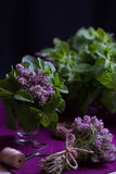 Ramalhete de ervas perfumadas Hortelã e tomilho O estilo da obscuridade Fotografia de Stock