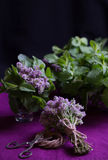 Ramalhete de ervas perfumadas Hortelã e tomilho O estilo da obscuridade Imagem de Stock Royalty Free