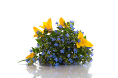 Ramalhete de flores adiantadas da mola Fotos de Stock Royalty Free