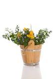 Ramalhete de flores adiantadas da mola Foto de Stock