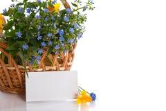 Ramalhete de flores adiantadas da mola Fotos de Stock