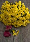 Ramalhete de flores amarelas bonitas e da folha vermelha, ainda vida Imagem de Stock Royalty Free