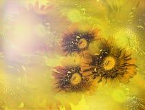 Ramalhete de flores amarelas do gerbera no fundo borrado brilhante imagens de stock royalty free
