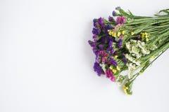 Ramalhete de flores bonitas Imagens de Stock Royalty Free