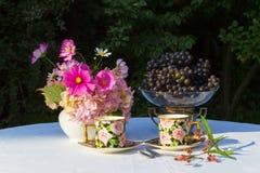 Ramalhete de flores cor-de-rosa, de uvas e de dois copos do porcelai inglês Imagens de Stock Royalty Free