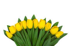 Ramalhete de flores da mola Imagens de Stock Royalty Free
