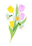 Ramalhete de flores da mola Fotos de Stock