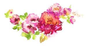 Ramalhete de flores delicadas da aquarela da mola ilustração do vetor