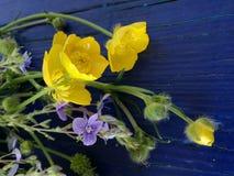 Ramalhete de flores do prado foto de stock