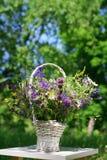 Ramalhete de flores do prado em uma cesta Fotos de Stock Royalty Free
