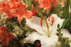 Ramalhete de flores frescas Imagem de Stock
