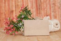 Ramalhete de flores secadas com papel vazio Imagens de Stock