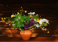Ramalhete de flores selvagens em um fundo de madeira no estilo do vintage Imagem de Stock