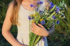Ramalhete de flores selvagens nas mãos da menina Imagens de Stock Royalty Free