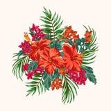 Ramalhete de flores tropicais ilustração stock