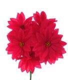 Ramalhete de flores vermelhas artificiais fotografia de stock