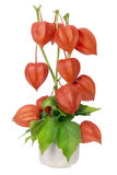 Ramalhete de Minimalistic - corações vermelhos do Valentim Fotos de Stock