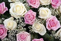 Ramalhete de Rosa Fotos de Stock Royalty Free