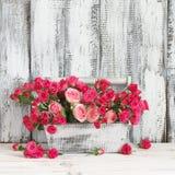 Ramalhete de rosas cor-de-rosa na caixa Imagens de Stock Royalty Free