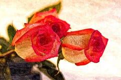 Ramalhete de rosas frescas Aquarela do desenho no papel Arte ingénua Aquarela da pintura no papel ilustração stock