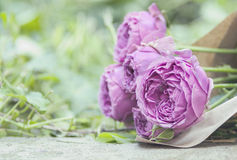 Ramalhete de rosas roxas pálidas fotografia de stock royalty free